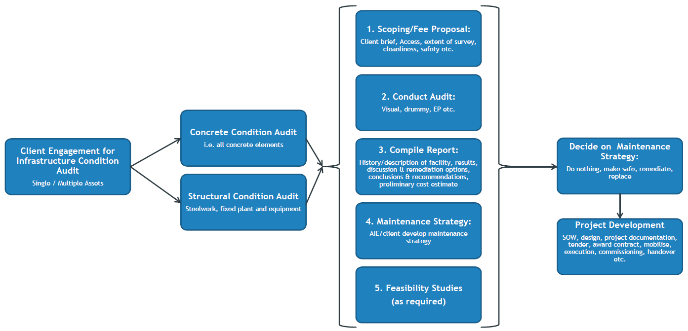 audit_process